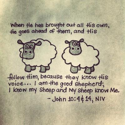 John 10:4 & 14, NIV